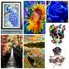Full Drill DIY 5D Diamond Painting Cross Stitch Embroidery Home Decor Craft US