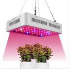 Indoor Led Grow Light Full Spectrum 300W Double Chips Growing Lamps with UV IR