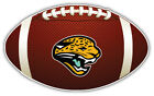 Jacksonville Jaguars Head NFL Logo Ball  Bumper Sticker Decal - 9'',12'' or 14'' on eBay