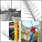 Stainless Steel Bird Spikes Kit Pigeon Repellent w Flexible Base Covers 10-100FT