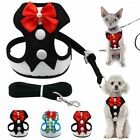 Mesh Small Dog Harness Nylon Breathable Puppy Vest Pet Walking Harness Leash Set