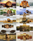 5 Piece Animal Wild Lion Painting Canvas Print Poster Wall Art Picture Decor