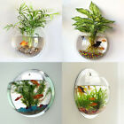 Wall Mount Pot Plant Vase Mounted Home Decoration Acrylic Fish Bowl Accessories