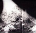 Asunder, Sweet and Other Distress by Godspeed You! Black Emperor: New
