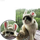 893D Colorful Cap Hat Puppy Toys Lovely Cat Cosplay Wig