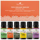 Plant Therapy Essential Oils Top 6 Organic Singles Set 100% Pure, Undiluted