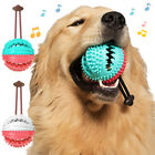FM_ New Pet Dog Multifunction Leakage Food Ball Suction Cup Squeaky Molar Chew T