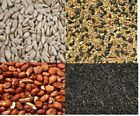 Multiple Varieties Of Bird Feed- Peanuts, Wild Bird Seed, Nyger, Sunflower Heart