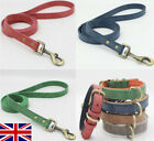 Quality Leather Dog Lead/Leash Red Blue Green Brown Grey. Size: Small, Medium