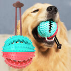 Pet Dog Puppy Leakage Food Ball Suction Cup Squeaky Molar Chew Toy Sur