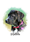 Photo to Painting Digital Watercolor Dog - Cat - Any  Animal