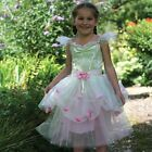 Apple Blossom Princess Child Fancy Dress Costume 3-11yr