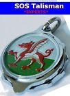 SOS Talisman Medical Necklet, Chrome Plated, WELSH DRAGON