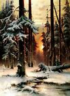 Winter Sunset in Fir Forest Picture Reproduction Art Print A4 A3 A2 A1