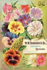 Barnard Vintage Seed Cover Picture Art Print Canvas Poster A4 A3 A2 A1