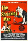 THE INCREDIBLE SHRINKING MAN 05 B-MOVIE REPRO ART PRINT A4 A3 A2 A1