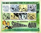 THE INCREDIBLE SHRINKING MAN 02 B-MOVIE REPRO ART PRINT A4 A3 A2 A1
