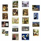 Chicken Magnet Rooster Duck Goose Booby Ostrich Choose Fave Fowl Picture