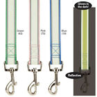 Glow in the Dark  Reflective Dog Leash Lead Pet 4 foot 6 foot pink blue green