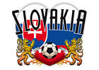 Brand NEW Printed T-SHIRT Quality SLOVAKIA FOOTBALL, All Sizes, All Colours