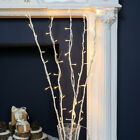 light twigs branches