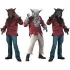 Kyпить Werewolf Costume Adult Halloween Fancy Dress на еВаy.соm