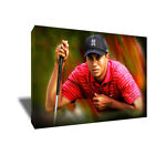 Golf Icon TIGER WOODS Eye of the Tiger Poster Photo Painting on CANVAS Wall Art