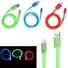 GLOW IN THE DARK Light-up LED USB Data Sync Charge Cable iphone 5 5S 5C itouch 5