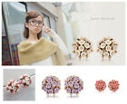NEW HOT Womens Beauty Flower Delicate Exaggerated Girls Stud Allergy Earrings