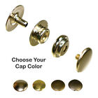 Line 24 Snaps - Solid Brass Nickel Plated 4 Cap Colors - 50 Pack