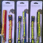REFLECTIVE DOG LEAD & COLLAR - AVAILABLE IN 3 COLOURS | PAW PRINT DESIGN