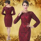Luxury Vintage Lace Ball Gown Slim Sexy Cocktail Evening Prom Party Swing Dress