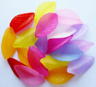 20 grams Approx 20 FROSTED ACRYLIC/LUCITE LEAF BEADS CHARMS 35mm Random Col Mix