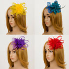 Fascinator Hair Comb Mesh Feather Hari Accessory Clip Corsage Pin