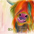 HIGHLAND COW PRINTS WaLL ART DeCoR of Original Painting JUICY FRUIT by SHIRLEY M