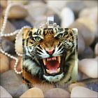 """GROWLING TIGER"" BIG CAT LION TIGER GLASS TILE CHARM PENDANT NECKLACE KEYRING"