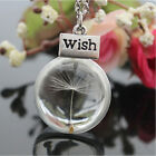 1X Dandelion Fairy Seed Make a Wish Glass Orb Pendant Bronze Chain Necklace UKEW