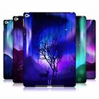 HEAD CASE DESIGNS NORTHERN LIGHTS HARD BACK CASE FOR APPLE iPAD