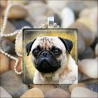 """PUG DOG CUTIE"" PUG LOVE GLASS TILE PENDANT NECKLACE KEYRING -Yellow Gold Design"