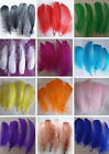 beautiful rare 40-1000root natural goose feather floating 10-15cm / 4-6inch