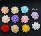 22Pcs Resin Rose Flower Flatback Appliques for Graft DIY 13mm