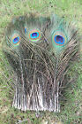new natural rare peacock feathers eyes 14-16 inches/35-40cm