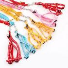 1Pcs Adjustable Bone Printing Rope 3 Model Small Pet Dog Cat Lead Leash Harness