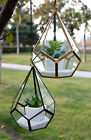 "WGV Tear Drop Triangular Geometric Glass Pannel Terrarium. 8"" GET0108"