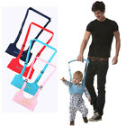 Внешний вид - Baby Safety Walking Assistant Adjustable Walk Learning Harness Protection Belt