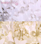1.5m CREAM or WHITE Butterfly & Pearl Plastic String Garland Cake Spray Wedding