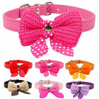 Adjustable Small Dog Collar Bowknot Pet Cat Necklace Pink Purple Black Cute