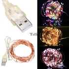 Halloween 10M 100LEDs String Light Christmas Party Wedding USB Decor Wire TXWD