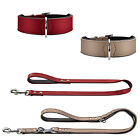 Dog puppy lead & collar set combo | Artificial leather | basic & training leads