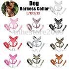 L/M/S/XS Leather Dog Harness Collar Leash Set Spiked Studded Terrier Staffy New